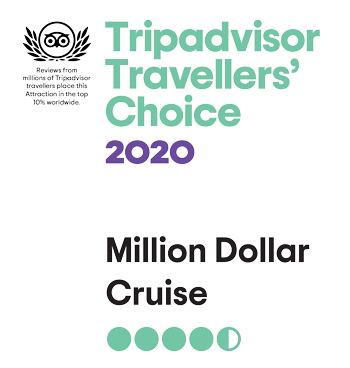 Trip Advisor Travellers Choice 2020
